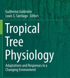 Tropical Tree Physiology - Adaptations and Responses by Goldstein