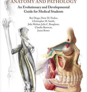 Understanding Human Anatomy and Pathology by Rui Diogo